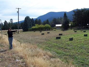 April points to bales of freshly cut alfalfa, Grand Forks BC