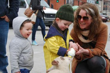 Feeding the Lambs at the Kingston Rally