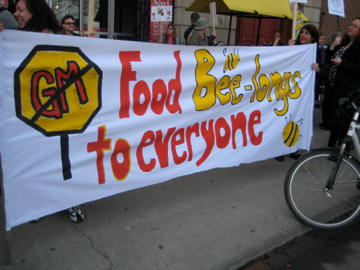 Food Bee-longs to Everyone, Toronto