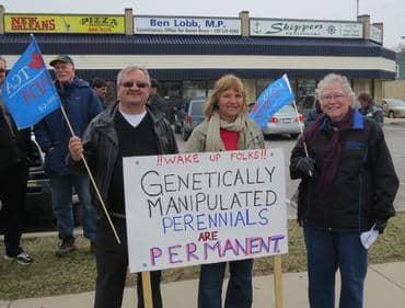 """GM Perennials are Permanent"" Goderich Ontario"