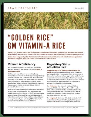"""Golden Rice"" – GM Vitamin-A Rice"