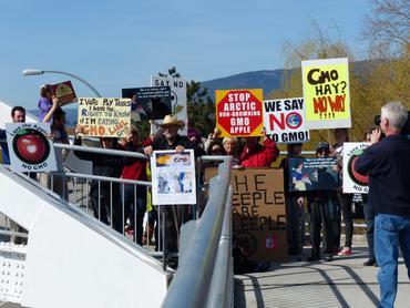 Kelowna crowd on the bridge