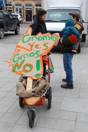 "Kingston Says ""Gnomes yes, GMOs no"""