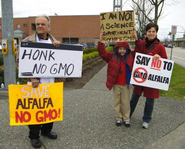 Langley Honk No GMO