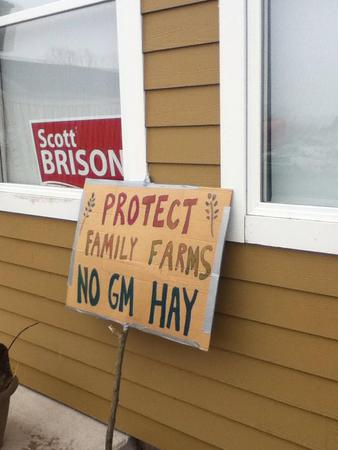 Outside the Constituency Office of MP Scott Brison