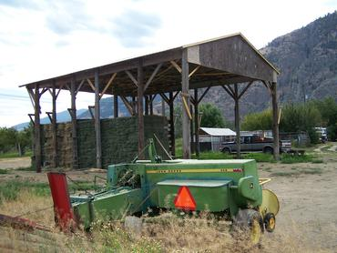Storing alfalfa hay for the winter.