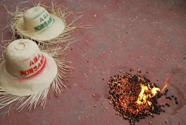 Symbolic burning of Monsanto's hybrid corn seed in Haiti