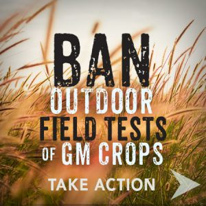 Ban Field Tests Action