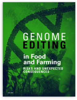 Genome Editing in Food and Farming: Risks and Unexpected Consequences