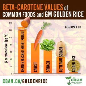 Golden Rice vs vegetables graph